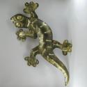 Salamandre applique