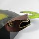 Pingouin design