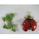 2 Magnets coccinelle-grenouille métal